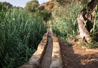 Giornate di Primavera: in Sicilia con il FAI
