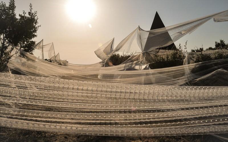 In Sicilia si celebrano la luce e l'estate