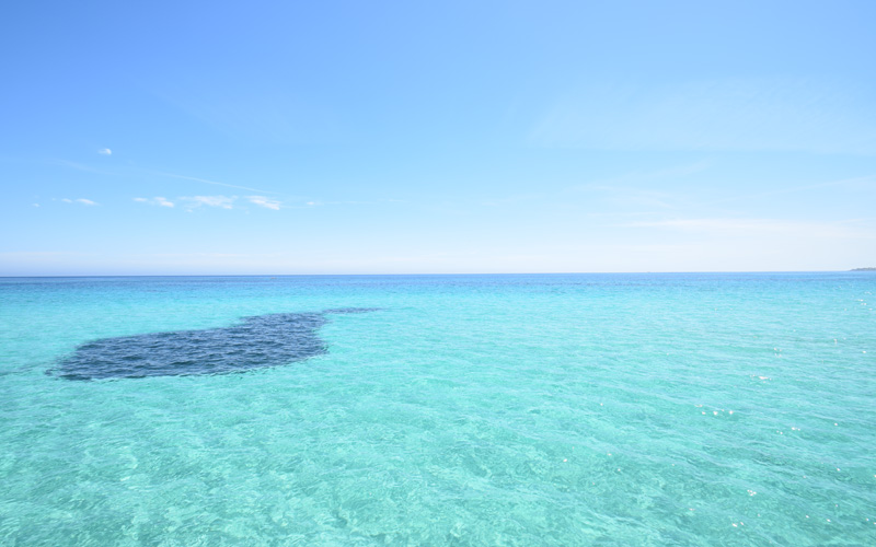 Cinque spiagge siciliane
