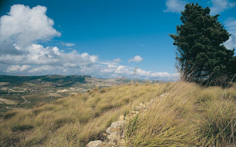 Alla scoperta di una terra ricchissima: una gita nella Valle del Belice